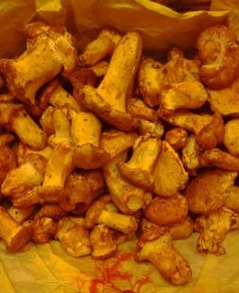 Chanterelle mushrooms frozen / kg